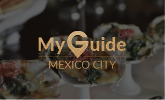 my guide mexico city reseña harrys