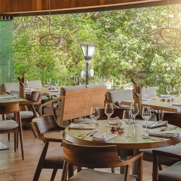 Harrys En Playa Del Carmen Restaurante De Lujo