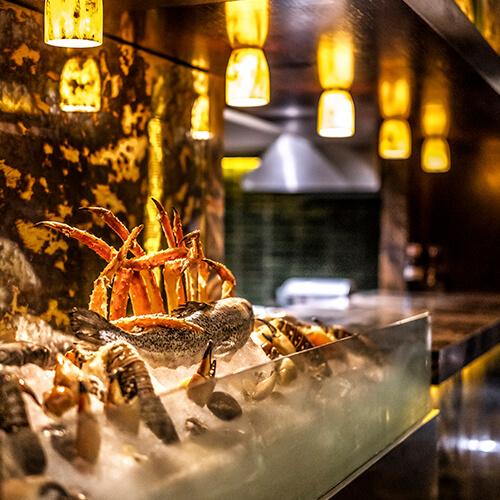 Harrys Cancun De Noche Restaurant Bar