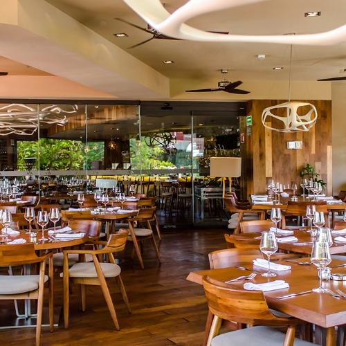 harrys restaurant playa del carmen