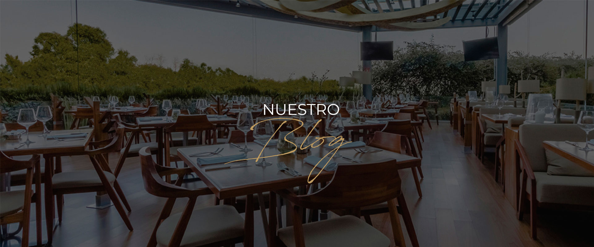 nuestro blog harrys cancun grupo anderson restaurantes