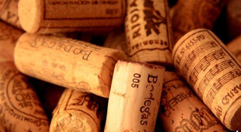 vinos bodega hinojosa