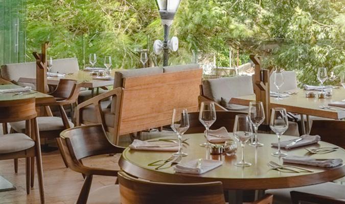 Harrys En Playa Del Carmen Restaurante Elegante