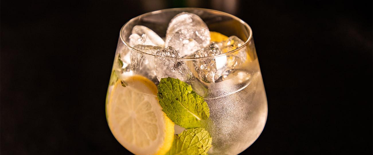Bebida Gin Tonic