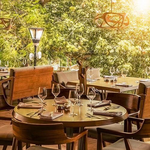 Playa De Carmen Restaurant Harrys